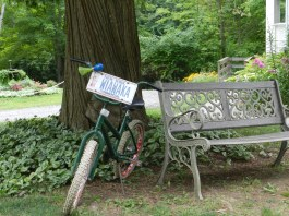 2011_Grounds_1
