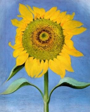 SunflowerByGOKEEFFE