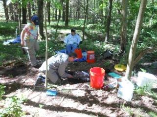 Wiawaka Excavations 2